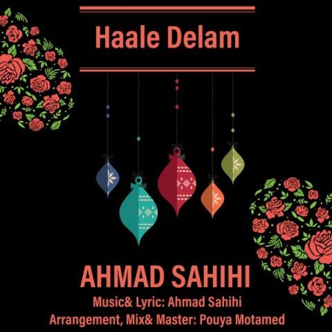 دانلود آهنگ جدید احمد صحیحی حال دلم