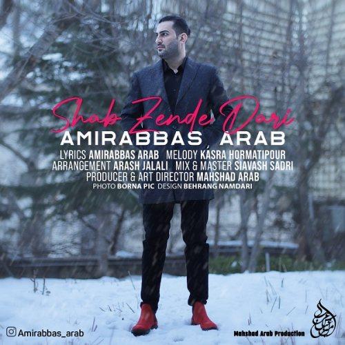 دانلود آهنگ جدید امیرعباس عرب شب زنده داری